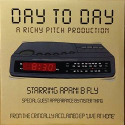 画像1: RICHY PITCH / DAY TO DAY