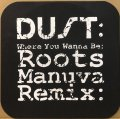 DUST / WHERE YOU WANNA BE (ROOTS MANUVA REMIX)