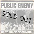 PUBLIC ENEMY / HAZY SHADE OF CRIMINAL