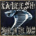 CALEESH / SNAKE IN THE GRASS