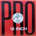 SPECIAL ED / FREAKY FLOW (DJ PREMIER REMIX)