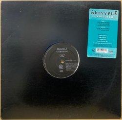 画像1: AKINYELE / LOVE ME FOR FREE